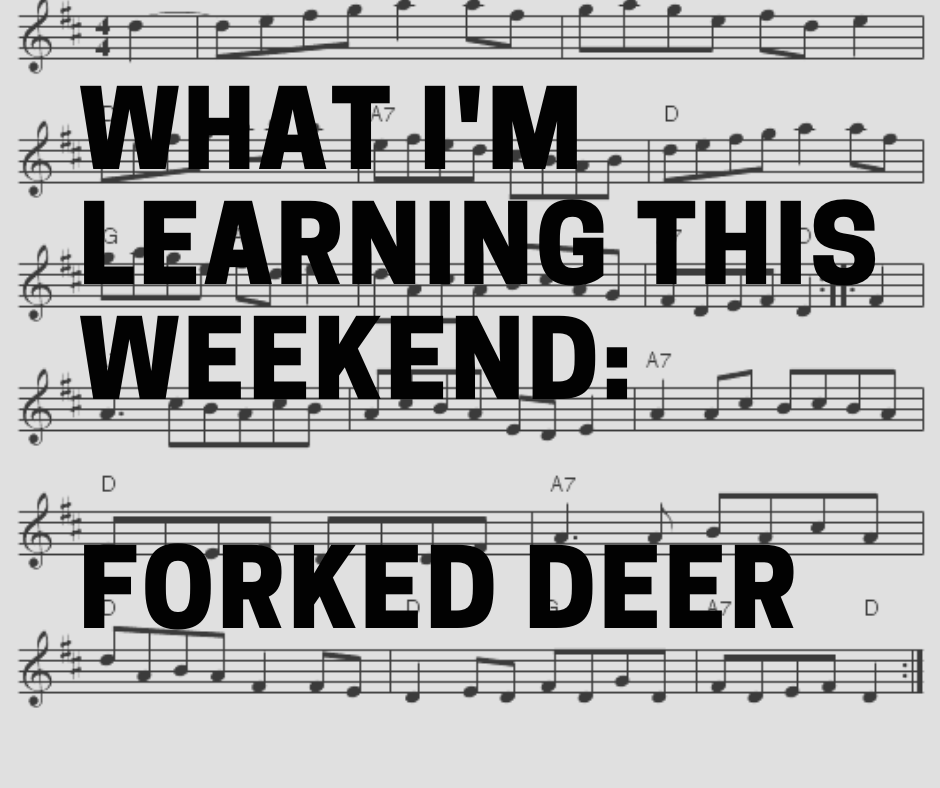 What I'm Learning This Weekend: Forked Deer