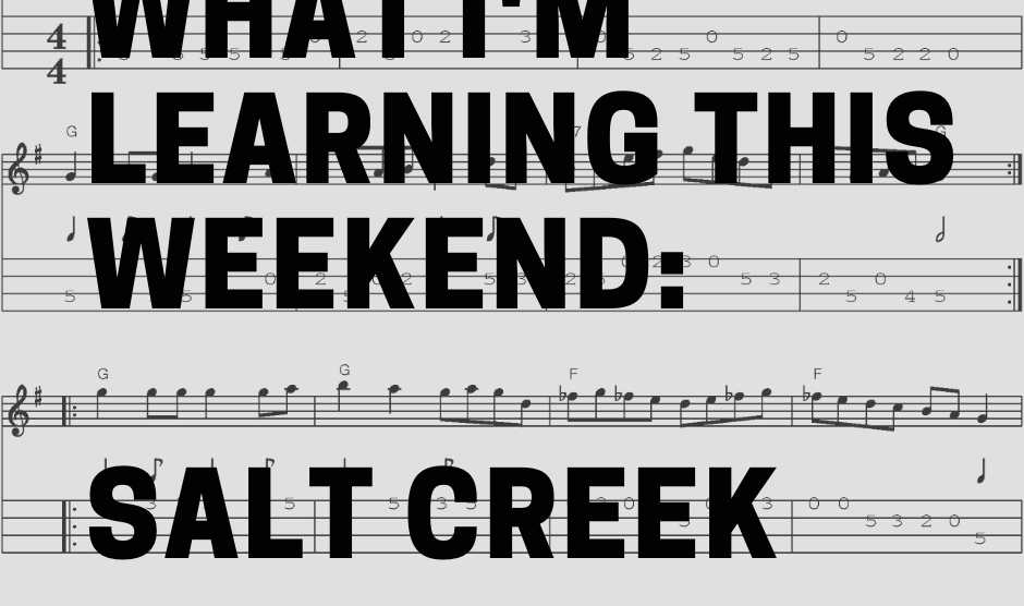What I'm Learning This Weekend: Salt Creek
